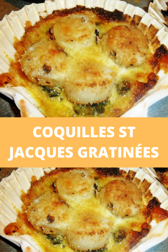 Coquilles St Jacques gratinées